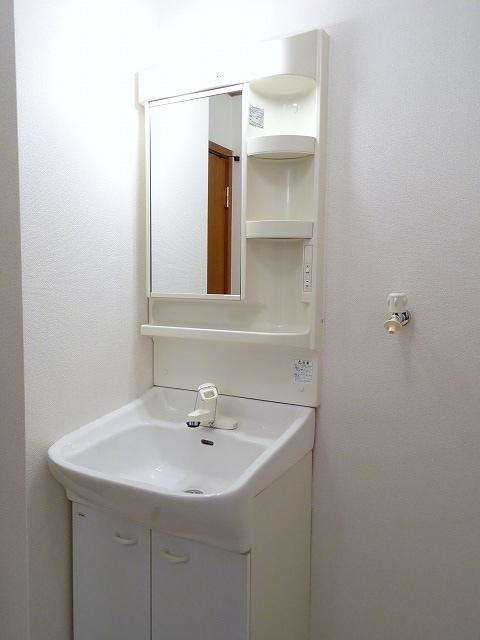 シャンリュエル 02010号室の洗面所