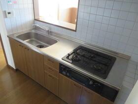 ベル・ドゥ・プレシーユ 202号室のキッチン