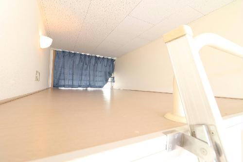 レオパレス新大宮 202号室の風呂