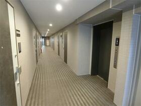 ディアレイシャス東京サウスパレス 217号室のエントランス