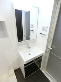 ディアレイシャス東京サウスパレス 217号室の洗面所