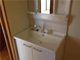 リヴィエール船堀 207号室の洗面所