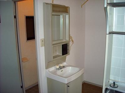 ベルコリーヌ藤ヶ丘 B201号室の洗面所