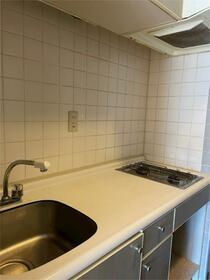 ライオンズマンション泉第2 501号室のキッチン