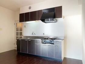 ロハス星川 402号室のキッチン