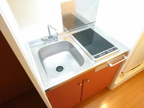 レオパレスコンフォートウッズⅡ 111号室のキッチン