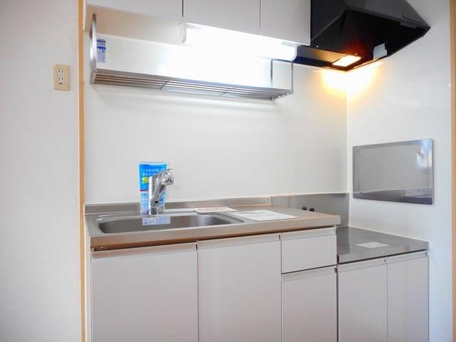 メゾンセントポーリアB 01010号室の風呂