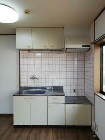 シーサイドタケウチ21 B棟 202号室のキッチン