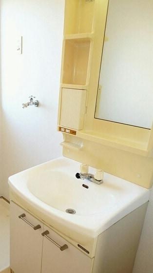 グリーンハイツ藤ヶ谷Ⅰ 01030号室の洗面所