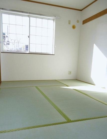 グリーンハイツ藤ヶ谷Ⅰ 01030号室のリビング