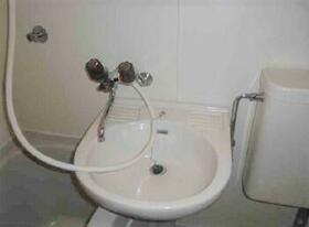 メゾン・ド・ラパン 0215号室の洗面所