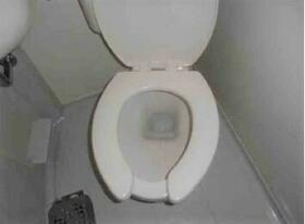 メゾン・ド・ラパン 0215号室のトイレ