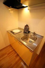 エクセルハイム 203号室のキッチン