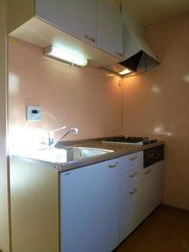 ザ・コートヤード 101号室のキッチン