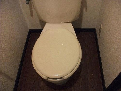 ライオンズマンション六本松第3 303号室のトイレ