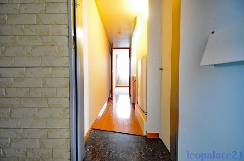 レオパレスパームヒルズB 203号室の玄関