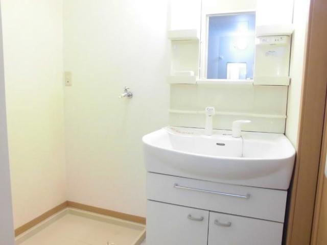 ツインコートB 02010号室の洗面所