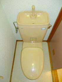 パインヒルハイツ 103号室のトイレ