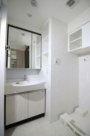 デュオステージ品川西大井 103号室の洗面所