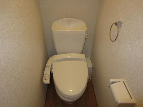 レオパレスmia domo 203号室のトイレ