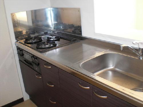レオネクストリブラ 207号室のキッチン