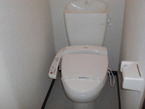 レオネクストリブラ 207号室のトイレ