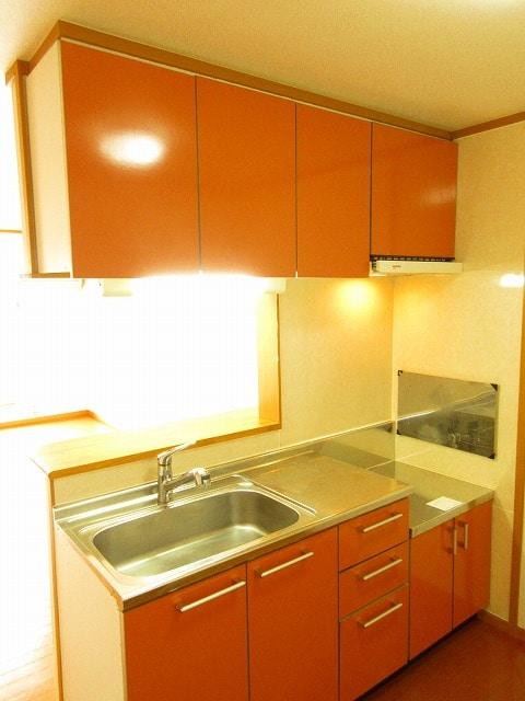 ノイ・アインズ B棟 02040号室のキッチン
