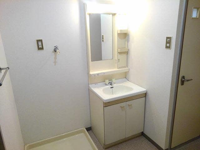 ファミールS 02030号室の洗面所