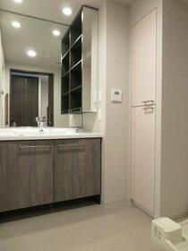 デュオセーヌ国立 242号室の洗面所