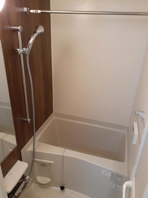 フルール・ド・リス Ⅰ 03020号室の風呂