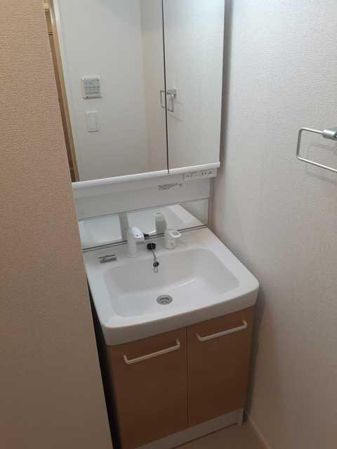 フルール・ド・リス Ⅰ 03020号室の洗面所