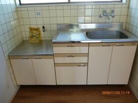 西大沼アパート 201号室のキッチン