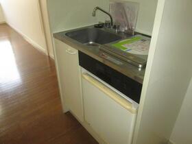 グリーンビレッジ D棟 205号室のキッチン