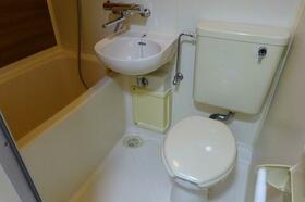 アルファネクストビッグフィールド 203号室のトイレ