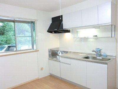 グリーンヒル 浄明寺 弐 01050号室のキッチン