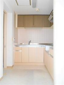 サンヨーレジデンスA棟 101号室のキッチン