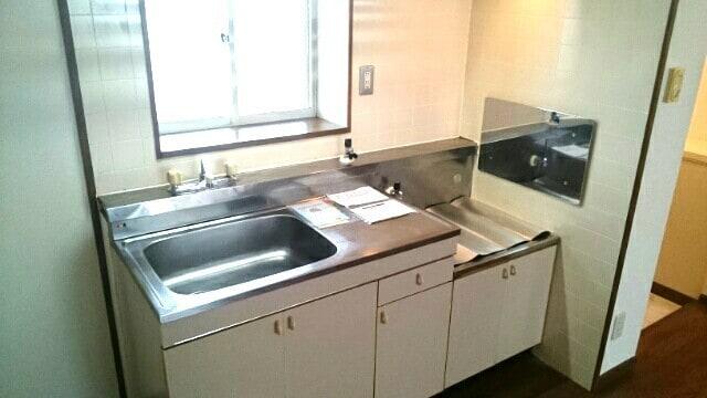 リバーガーデンⅡ 02030号室の洗面所