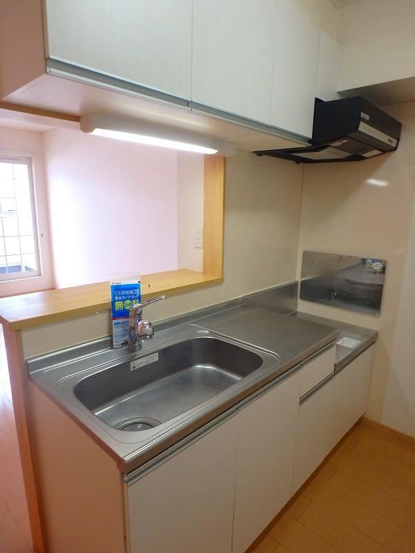ファインブルク・K 02030号室のキッチン