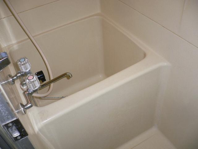 ホワイトパレス 102号室の風呂