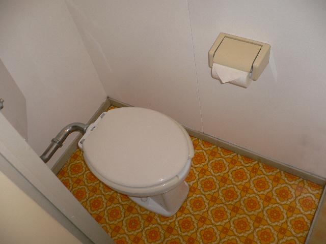 ホワイトパレス 102号室のトイレ