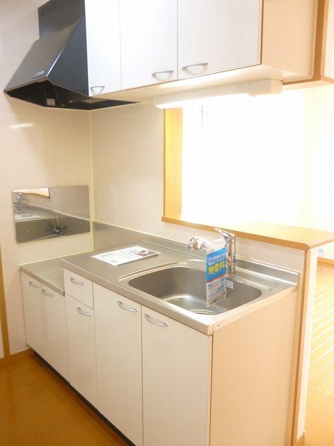 グランデヒサノD 02010号室のキッチン