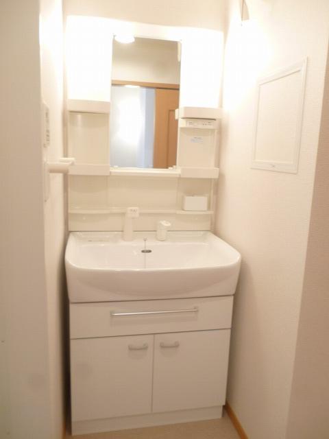 グランデヒサノD 02010号室の洗面所