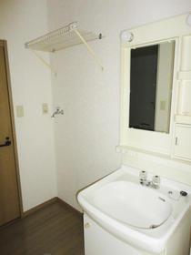 サンライフドリーム 202号室の洗面所