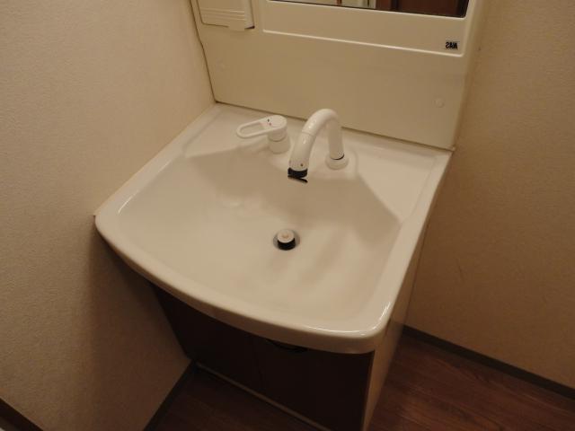 サニープレイス.F 201号室の洗面所