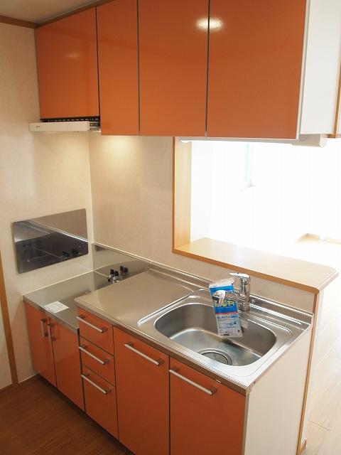 エクセルグリーンⅢ 01010号室のキッチン