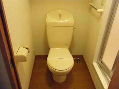 レオパレスコーワ ビレッジ 206号室のトイレ