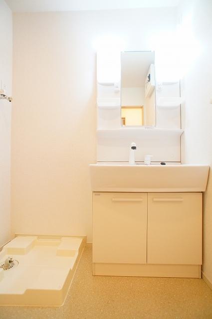 ブランカA 02010号室の洗面所
