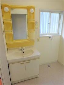 エスペランサ田園X 101号室の洗面所