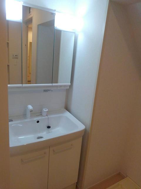 サフィール 01020号室の洗面所