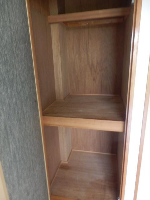 サウスヴィラ 01020号室の収納